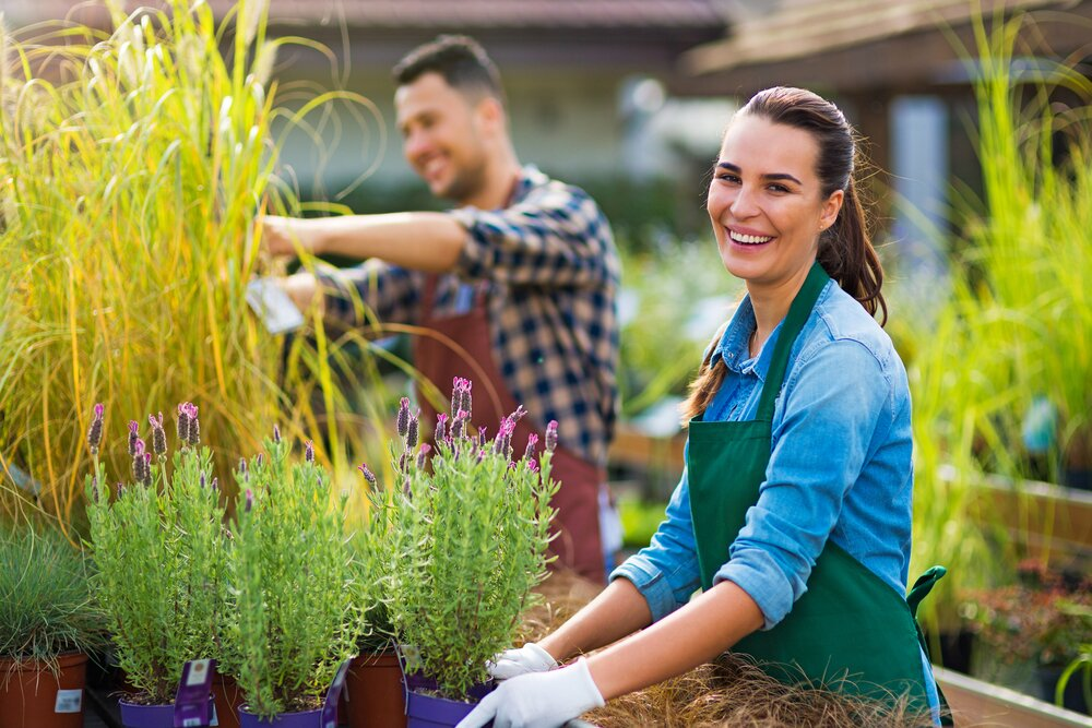 6 reasons why Local SEO Marketing is important for your garden centre