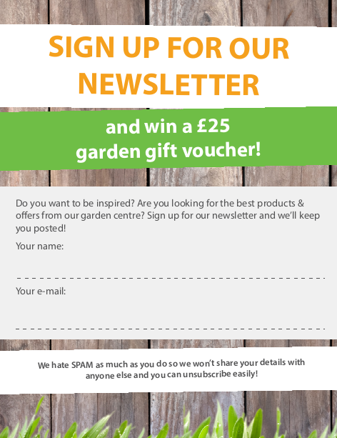 Prize draw to help you grow your email subscriber base