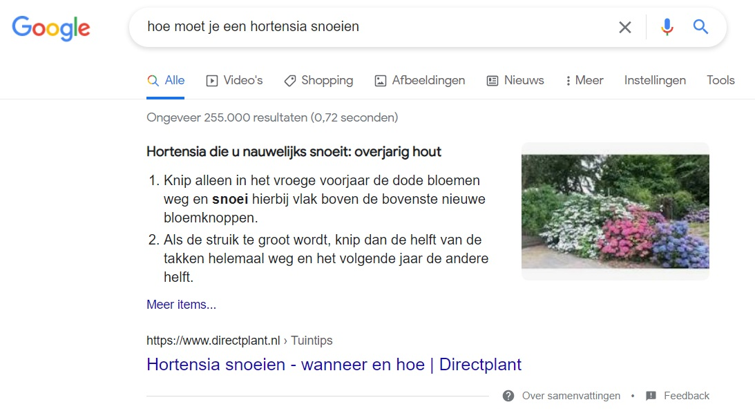 hoe featured snippet in Google
